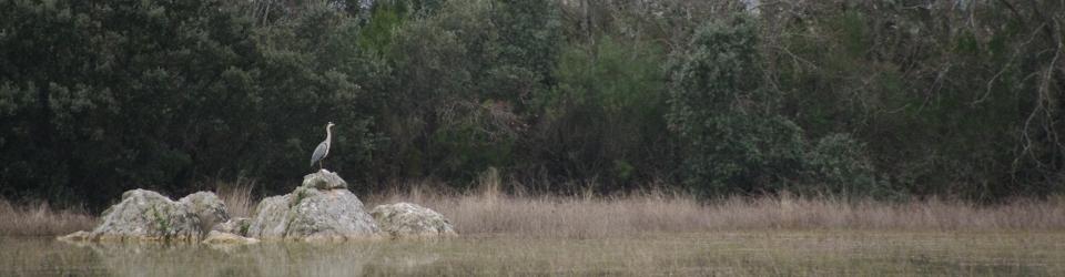 EcoTurismo en el Parque Nacional de Cabañeros