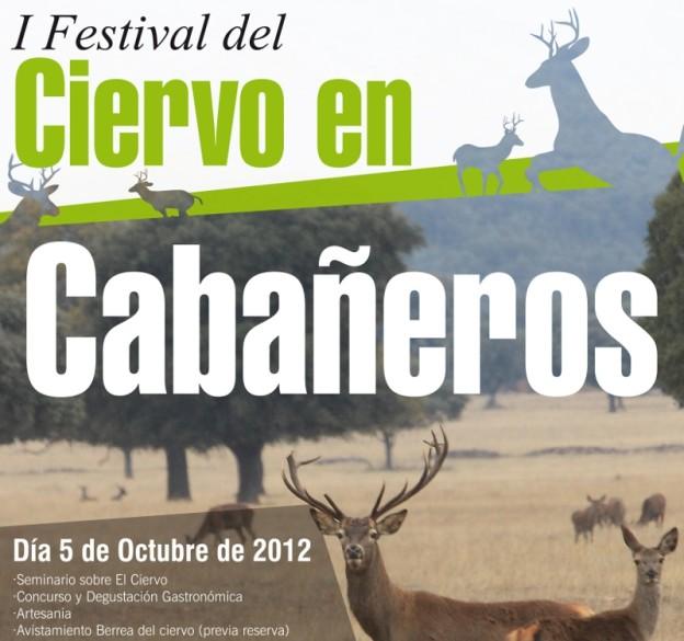 festivalciervo2012